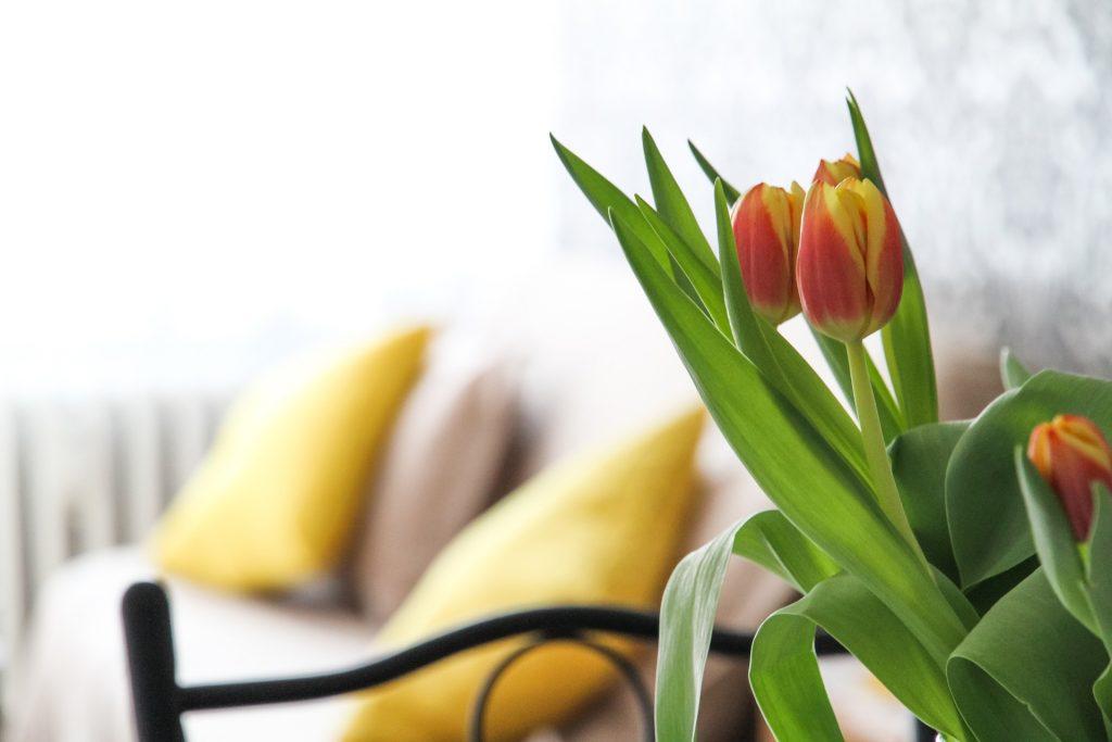 salotto con tulipani
